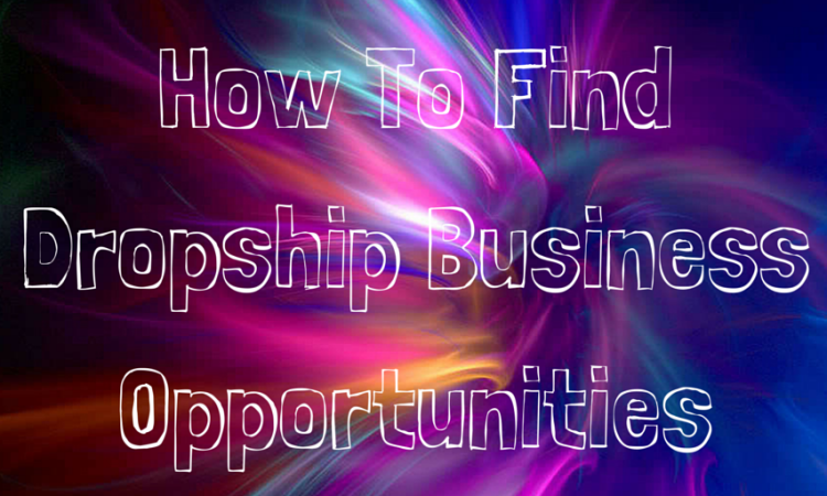 Finding dropship business opportunities